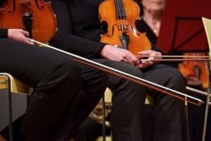 Erwachsene lernenr Geige mit Giegenunterricht und Geigenlehrer