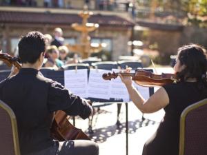 Geige lernen mit Geigenunterricht und Geigenlehrer in Owen (Teck)