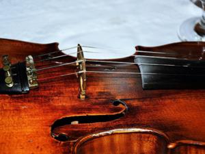 Geige lernen mit Geigenunterricht und Geigenlehrer in Colditz