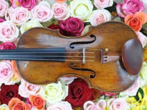 Geige lernen mit Geigenunterricht und Geigenlehrer in Hartmannsdorf bei Chemnitz