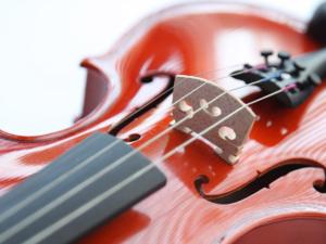 Geige lernen mit Geigenunterricht und Geigenlehrer in Titisee-Neustadt
