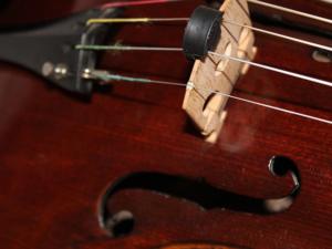 Geige lernen mit Geigenunterricht und Geigenlehrer in Berghofen