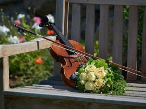 Geige lernen mit Geigenunterricht und Geigenlehrer in Westerrönfeld