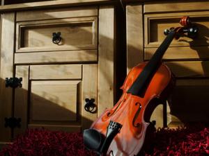 Geige lernen mit Geigenunterricht und Geigenlehrer in Rietberg