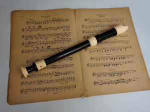 Blockflöte lernen mit Blockflötenunterricht und Blockflötenlehrer in Scheßlitz